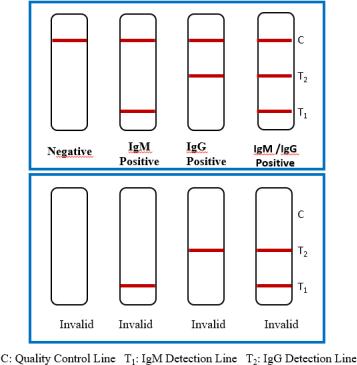 Интерпретация результатов тестирования на коронавирус COVID-19